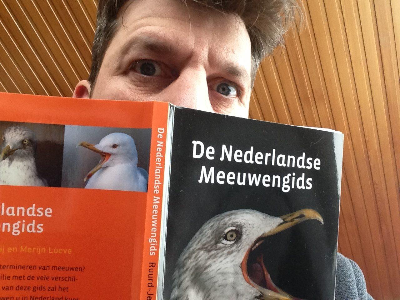 De Nederlandse Meeuwengids – Ruurd-Jelle van der Leij en Merijn Loeve