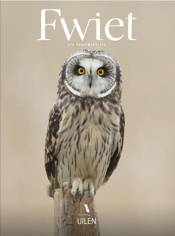 Fwiet – een nieuw vogelmagazine is geboren! Check www.fwiet.be